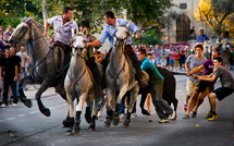 Running of the Bulls, in St. Remy-de-Provence